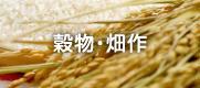 穀物・畑作